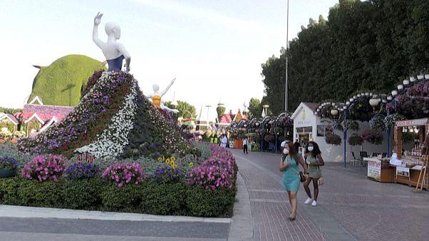 Megnyílt a világ legnagyobb kertje Dubajban