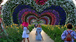 Fotopause im Blumentunnel...