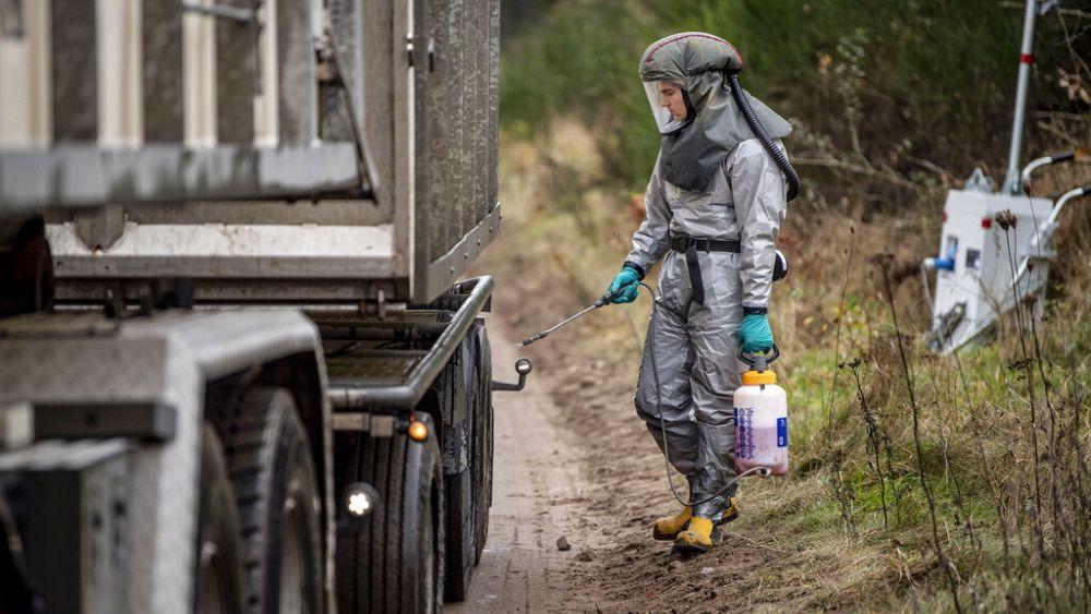 Coronavirus: Should we be worried about Denmark's COVID-19 mutation in mink?