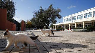 Εικόνα αρχείου από κλειστό σχολείο στην Ελλάδα στο πρώτο lockdown