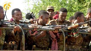 Tentatives de médiations du conflit au Tigré