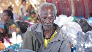 'Dismembered bodies': Refugees recount horrors of Tigray fighting