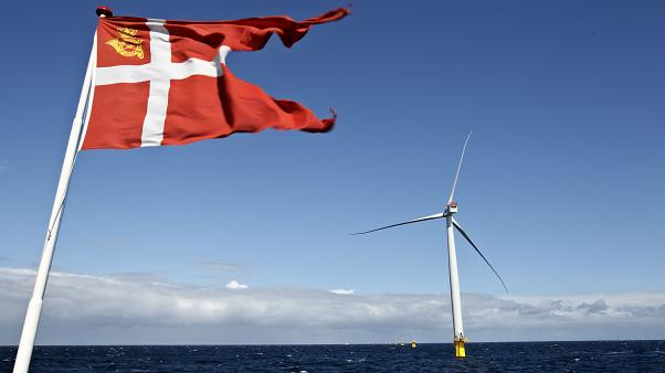 The suspect, who had been living in Denmark, is accused of providing information on Danish energy technology.