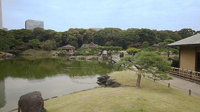 Tokyo: Japan's city garden
