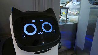 """Un café de Moscou se dote d'un """"serveur-robot"""""""