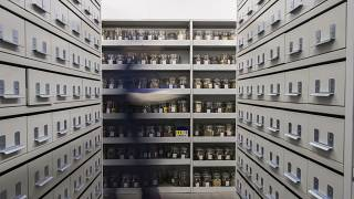 Vaults at the Millennium Seed Bank