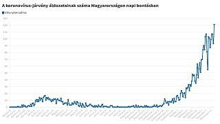 A koronavírus szövődményeiben elhunytak száma Magyarországon, 2020. november 21-én