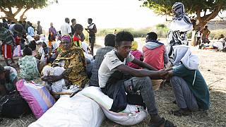 'People just want to eat': Ethiopian refugees get food aid as humanitarian crisis deepens