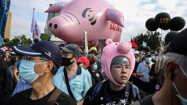 People attend the annual pro-labor march 'Autumn Struggle' to protest against the lifting of restrictions on US pork containing ractopamine feed additive, in Taipei.