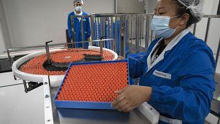 شركة سينوفاك  الصينية، إنتاج لقاح مضاد لفيروس كورونا