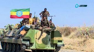 نیروهای نظامی دولت فدرال اتیوپی