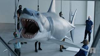 """workers set up """"Bruce the Shark"""" installation"""