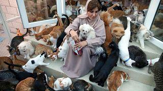 مريم البلوشي تحيط بها حيواناتها في منزلها في مسقط. 2020/11/20