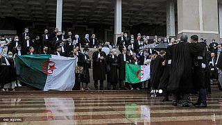 """محامون جزائريون يرددون شعارات ويلوحون بالأعلام الوطنية الجزائرية يتظاهرون أمام محكمة الجزائر للمطالبة """"باستقلال القضاء"""""""