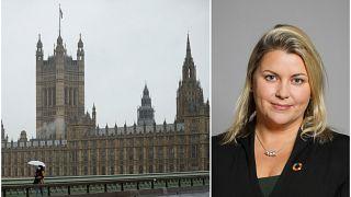 Westminster Parlamentosu / Liz Sugg
