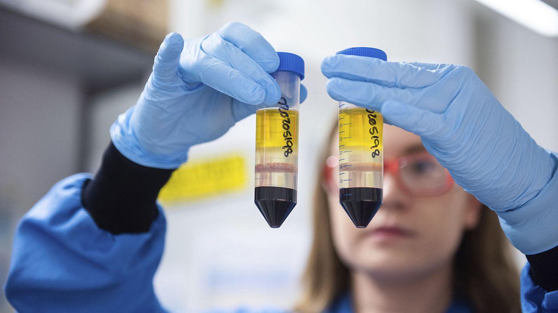 Astrazeneca Reveals Dosing Mistake In Coronavirus Vaccine Trials Euronews