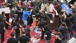 أمعاء الخنزير تتطاير في برلمان تايوان