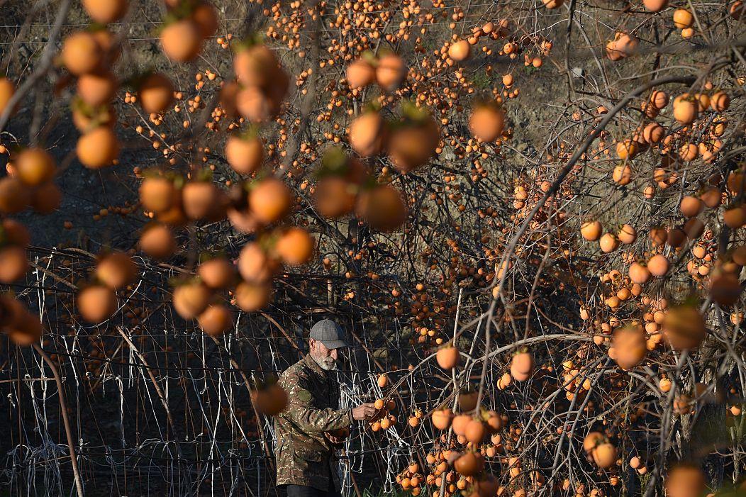 Karen Minasyan/AFP