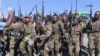 Etiyopya'da isyancı güçler TPLF'ye karşı yürütülen askeri operasyon tamamlandı