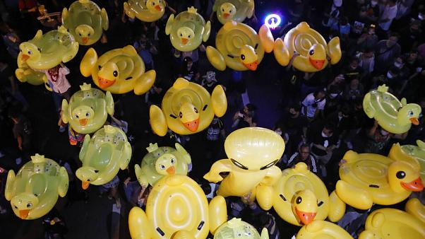 The ducks have become a symbol of the protest movement