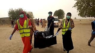 Nigeria: at least 43 farm workers killed by Boko Haram