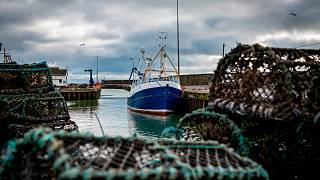 Jan. 28, 2020 photo, a fishing vessel is docked at Kilkeel harbor in Northern Ireland.