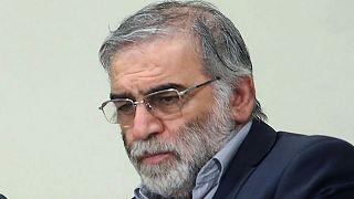 محسن فخریزاده