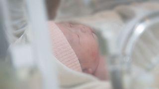 تولدی نوزادی با پادتن کرونا