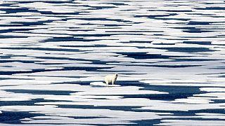 Kanada'nın kutup bölgesine yakın bir yeri olan Franklin Strait'te çekilmiş bir kare.