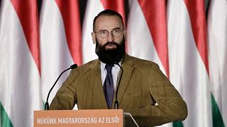 AP Milletvekili Jazsef Szajer