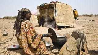 Afrique de l'Ouest : 16 millions de personnes en insécurité alimentaire