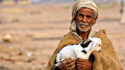 A Bedouin male walking in the desert