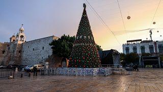 شجرة عيد الميلاد - بيت لحم