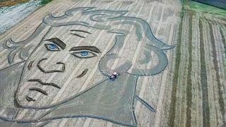 إيطالي يرسم وجه بيتهوفن عملاق على حقل