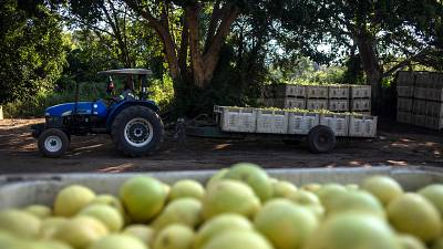 South Africa prepares $66m to help farmers affected by COVID-19