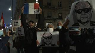 NGOs protest outside French parliament over Egypt's Sisi visit