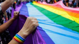 پرچم رنگینکمانی دگرباشان جنسی
