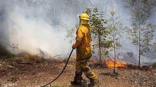 العواصف تساعد في احتواء حريق في جزيرة مدرجة على قائمة التراث العالمي
