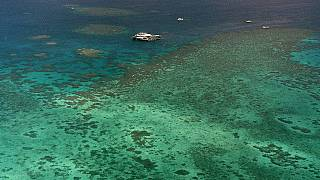 FILE: Sept. 10, 2001 - Agincourt Reef, located about 30 miles off the coast near the northern reaches of the 1,200-mile long Great Barrier Reef