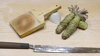la racine du wasabi