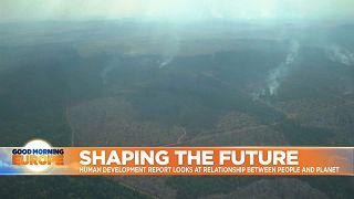 Amazon Rainforest burn