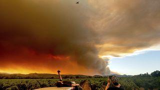Des gens regardent un panache de fumée se répandre sur Healdsburg, en Californie, alors que des feux de forêt brûlent à proximité, le 20 août 2020.