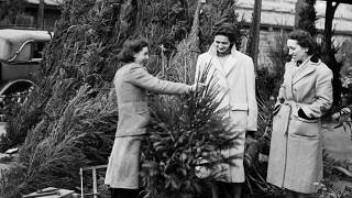 Unas mujeres compran un árbol de Navidad en París, Francia, el 14 de diciembre de 1951.