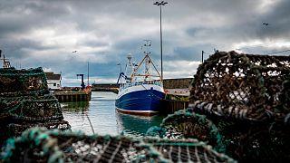 Futuro continua incerto para o setor das pescas em águas britânicas