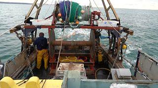 Brexit : blocage sur la pêche, le Parlement européen veut un accord avant dimanche minuit