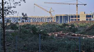 FILE - In this Dec. 8, 2020 file photo, felled trees lie on the construction site of the Tesla Gigafactory in Gruenheide near Berlin, Germany.
