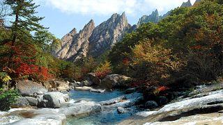 Kuzey Kore'nin turistik Kumgang Dağı bölgesi