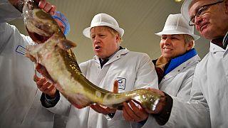Boris Johnson e as pescas