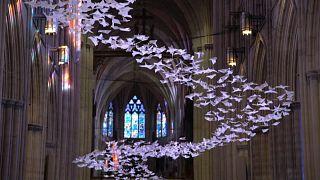 Les colombes de l'espoir dans la cathédrale de Washington, fermée en raison de la pandémie