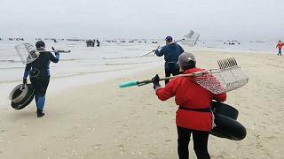 Pescadores de marisco tentam superar impacto da pandemia na Galiza